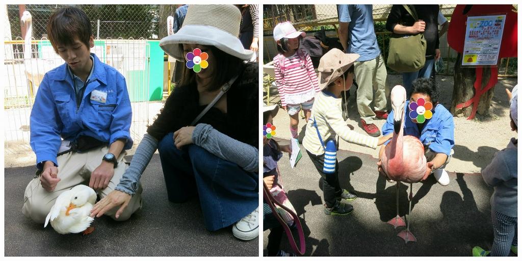 岡山 池田動物園は良いところでした3