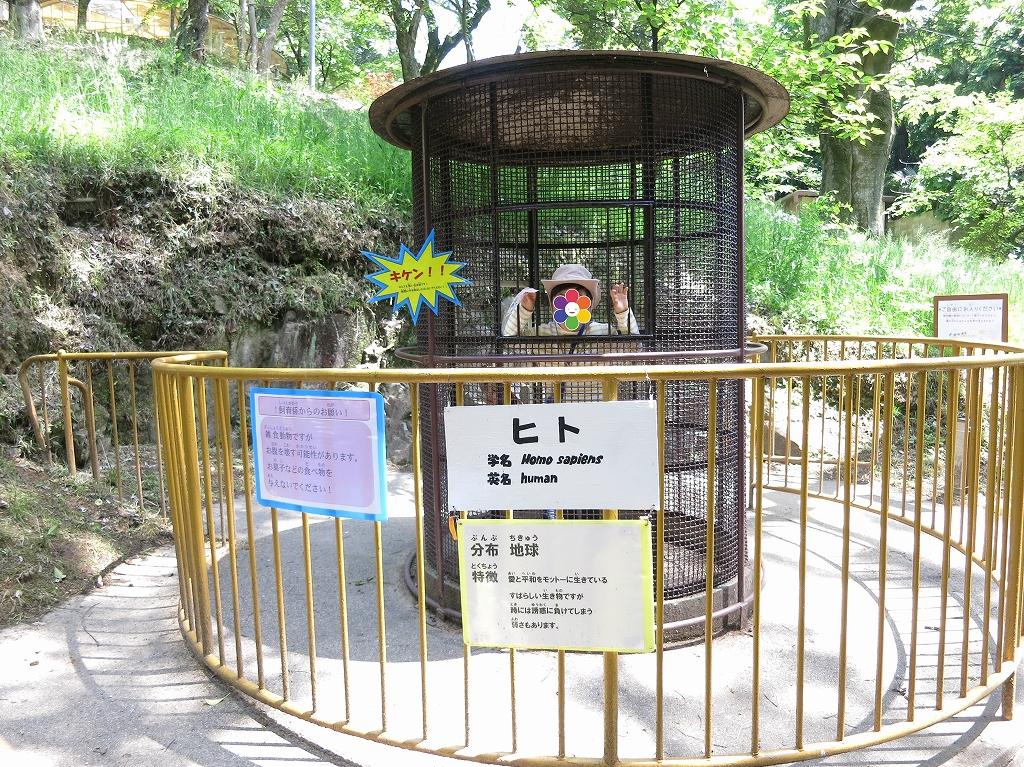 岡山 池田動物園は良いところでした7