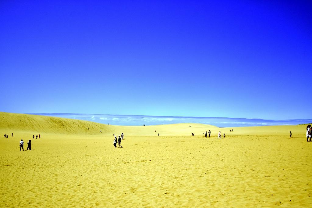 鳥取砂丘とても良かった1