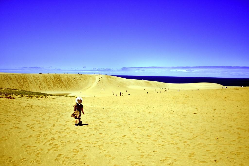 鳥取砂丘とても良かった3