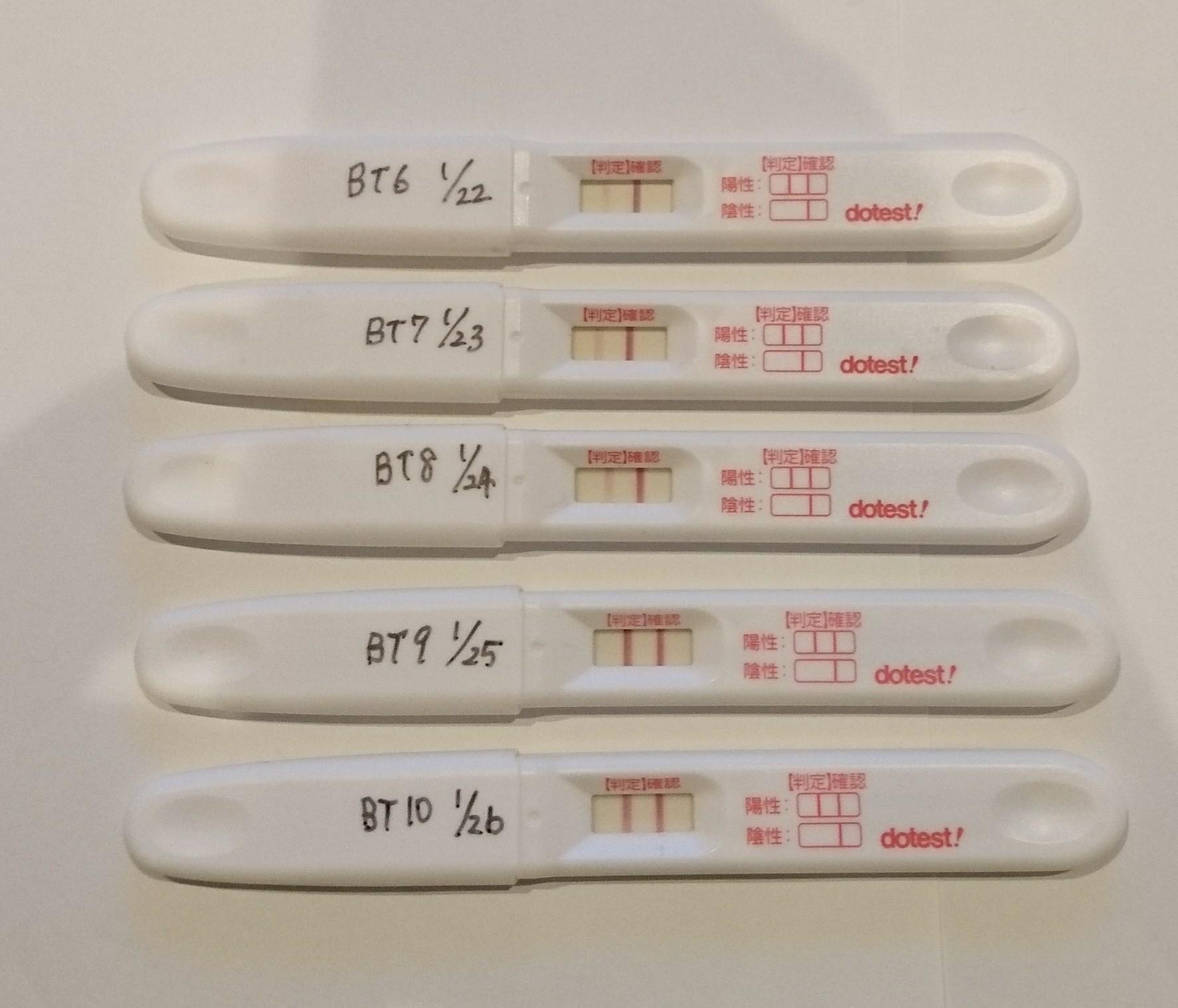 フライング 胚移植10日目