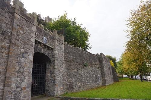 アイルランド (88)