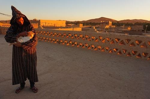 ハシラビード~サハラ砂漠 (6)