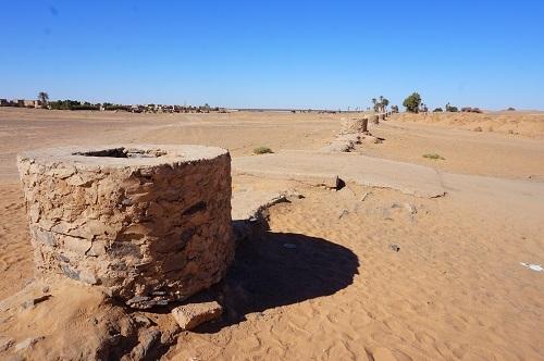 ハシラビード~サハラ砂漠 (14)