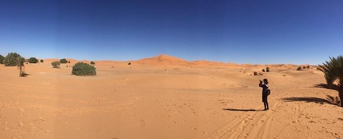 ハシラビード~サハラ砂漠