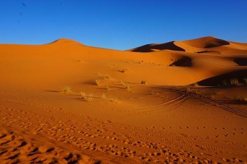 サハラ砂漠20171120 (49)