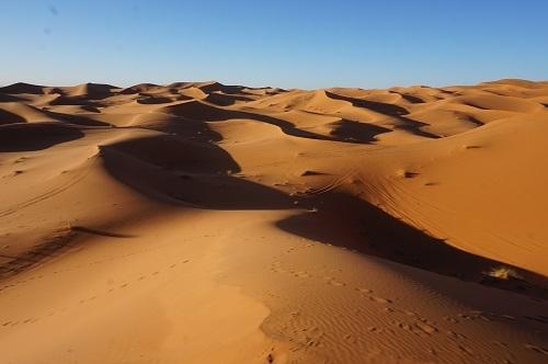 サハラ砂漠20171120 (54)