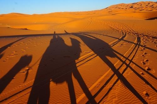 サハラ砂漠20171120 (70)