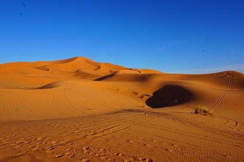 サハラ砂漠20171120 (21)