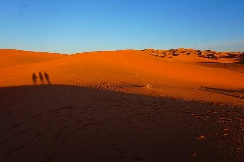 サハラ砂漠20171120 (89)