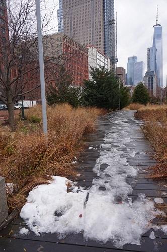 ニューヨーク街歩き1 (6)