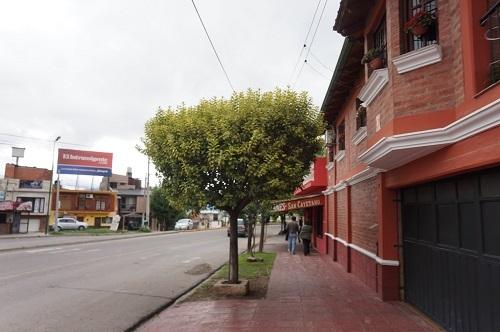 SAN LORENZO (23)