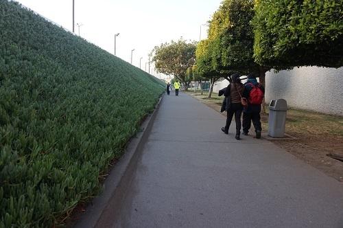 リマ→パナマ→メキシコシティ (14)
