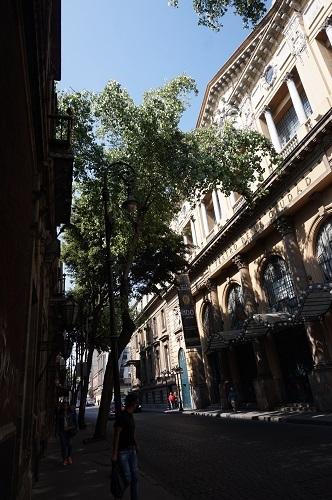 メキシコシティ (9)