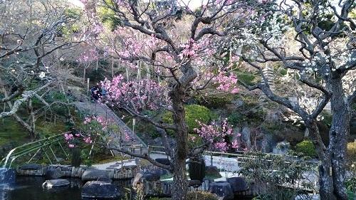 鎌倉 (18)
