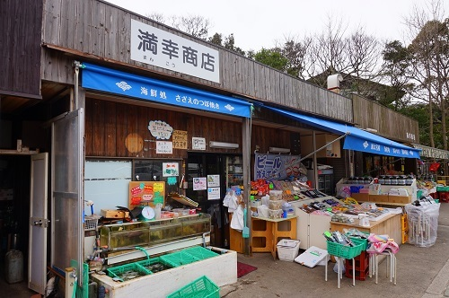 淡嶋神社 (4)
