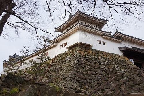 和歌山城 (1)