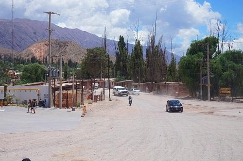 自然系アルゼンチン (2)