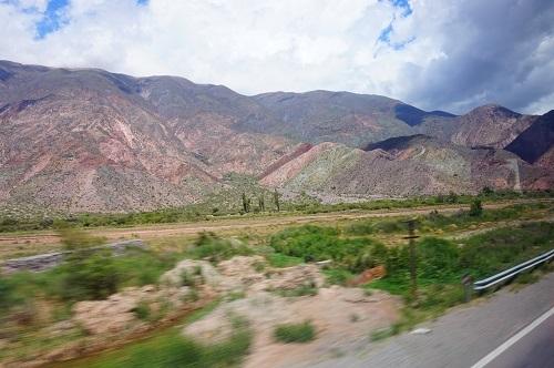 自然系アルゼンチン (3)