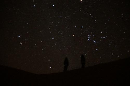 自然系サハラ砂漠 (4)