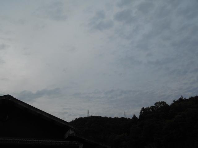 DSCN3333.jpg