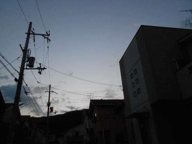 DSCN7056.jpg