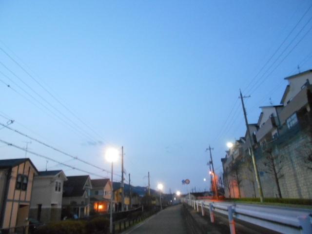DSCN9733.jpg