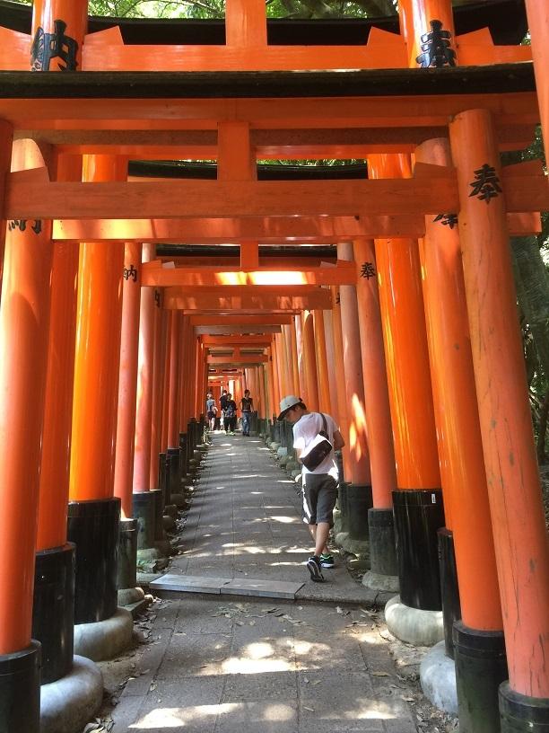 京都旅行伏見稲荷大社1
