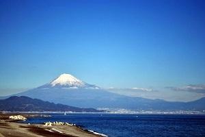 静岡三保の松原