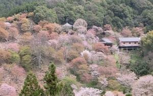奈良県の有名なもの6