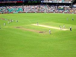 250px-CricketSCG1.jpg