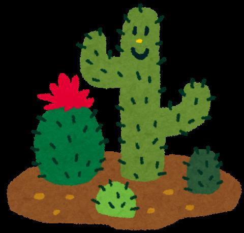 plant_cactus.png