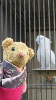 2017 1 16 (月) お城の動物園&ベァー