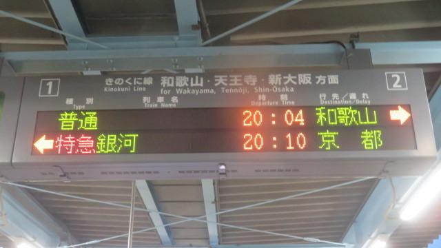 2019 5 18 大阪 中之島公園 バラ園