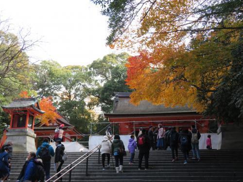 2016 12 9 京都(伏見稲荷)