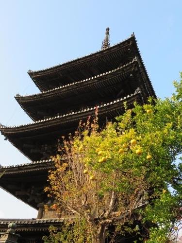 2016 12 9 京都 八坂の塔