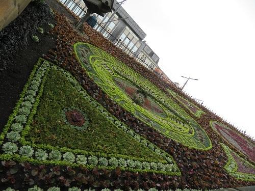 2018 5 31緑花センター