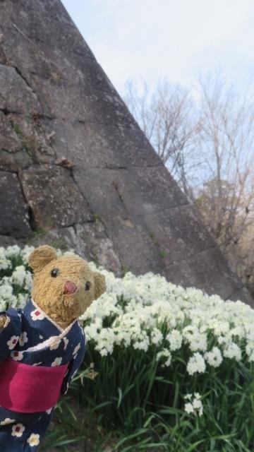 2017 4 2   お城 しだれ桜