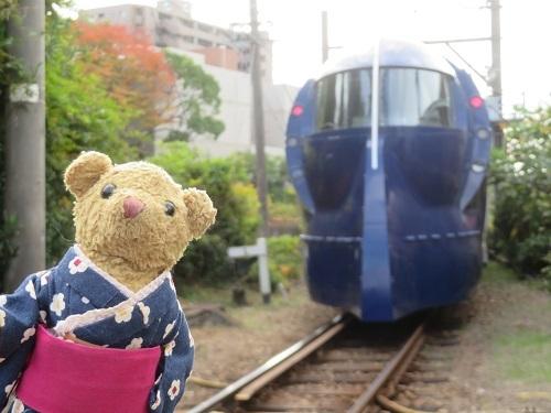 2017 11 28 お城 三年坂のイチョウの木 (クッキーちゃん)