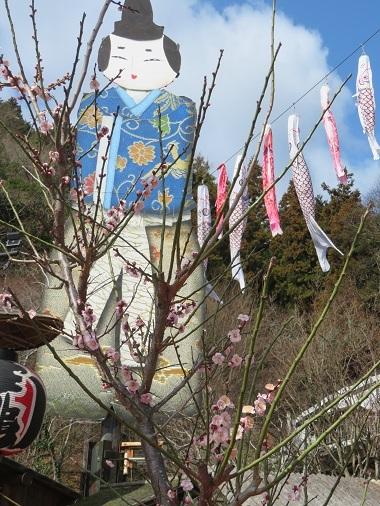 2017 12 29   お城 三年坂のイチョウの木