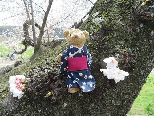 2018 2 4 かつらぎ温泉 八風の湯さん