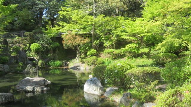 2021 4 10 紅葉溪庭園
