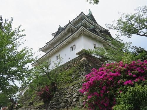 22018 3 15 お城(水仙)